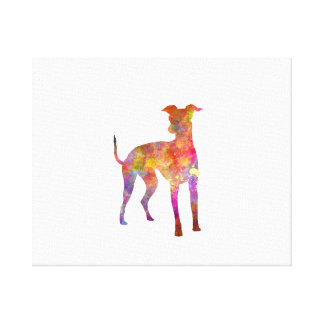Italian Greyhound in watercolor Canvas Print