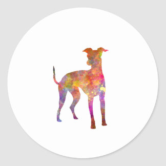 Italian Greyhound in watercolor Classic Round Sticker