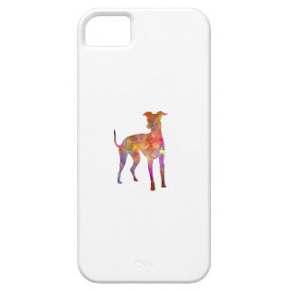 Italian Greyhound in watercolor iPhone 5 Cover