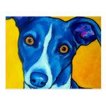 Italian Greyhound Post Card