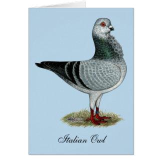 Italian Owl Grizzle Pigeon Card
