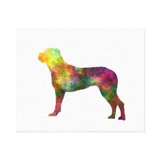Italian Privateering Dog 01 in watercolor 2 Canvas Print