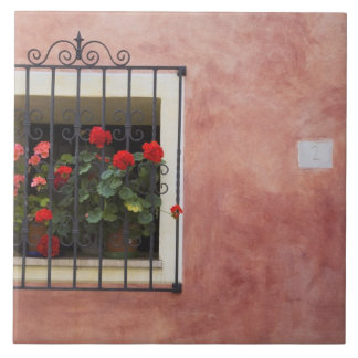 Italy, Asciano, Window Boxes with Fresh Spring Tile