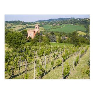 Italy, Bologna, View through Vineyard to Chiesa Postcard