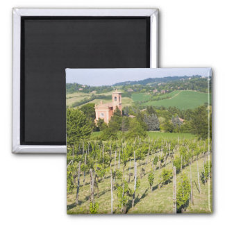 Italy, Bologna, View through Vineyard to Chiesa Square Magnet
