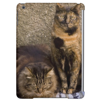 Italy, Cinque Terre, Vernazza. Three cats beside iPad Air Covers
