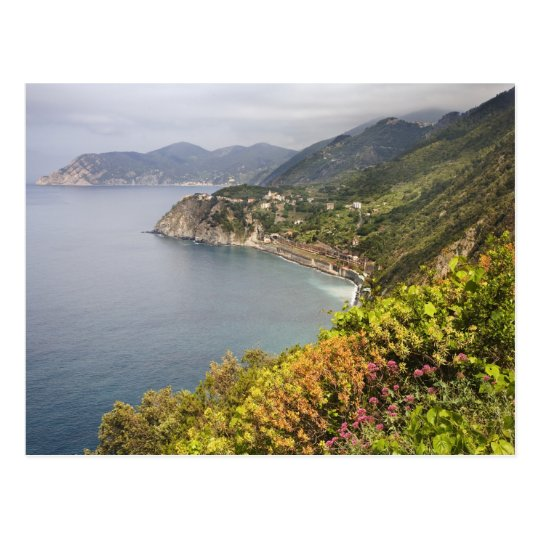 Italy. Coastal hiking area between the villages Postcard