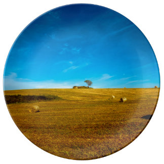 Italy landscape with tree plate