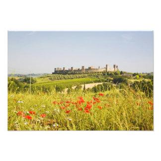 Italy, Monteriggioni, Field View of Photo Print