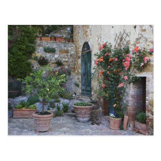 Italy, Petroio. Potted plants decorate a patio Postcard