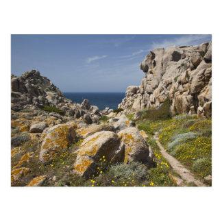 Italy, Sardinia, Santa Teresa Gallura. Capo 2 Postcard