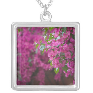 Italy, Sicily, Cefalu, Flowered Courtyard by Silver Plated Necklace