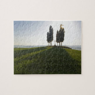 Italy, Tuscany, Cypress Trees in Tuscany with Jigsaw Puzzle