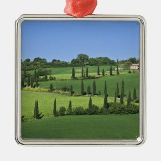 Italy, Tuscany, Multepulciano. Cypress trees Silver-Colored Square Ornament