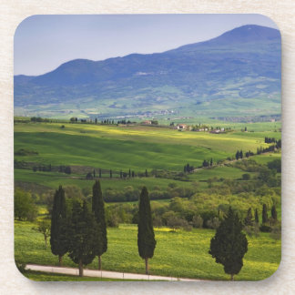 Italy, Tuscany. Scenic of the Tuscan Beverage Coaster