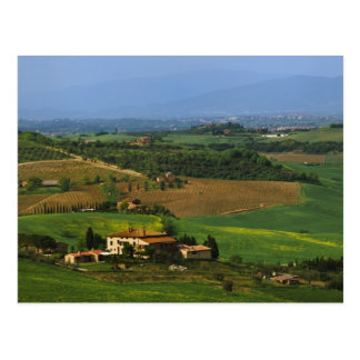 Italy, Tuscany. Scenic of the Val d'Orcia Postcard
