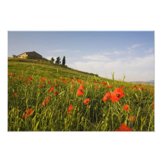 Italy, Tuscany, Tuscan Villa in Spring With Photographic Print