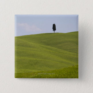 Italy, Tuscany, Val D'Orcia, Lone tree on hill 2 Inch Square Button
