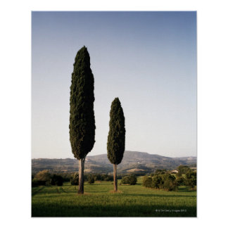 Italy,Tuscany,Val d'Orcia Poster
