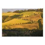 Italy, Tuscany, ZigZag Road in Tuscany. Photo Art