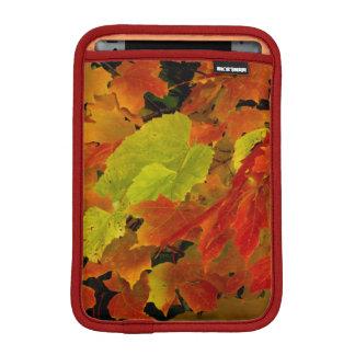 Itasca State Park, Fall Colors iPad Mini Sleeves
