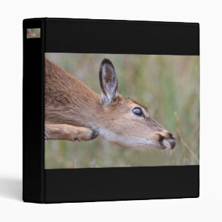 Itchy Fawn Vinyl Binders