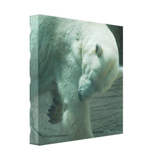 Itchy Polar Bear Canvas Print