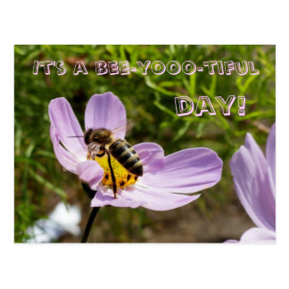 It's a bee-yooo-tiful day! / Bee Poscard Postcard