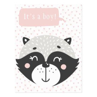 It's a boy!  | Cute Racoon Baby Postcard