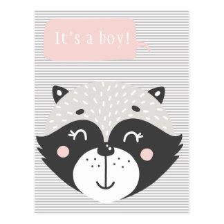 It's a boy!    Cute Racoon Baby Postcard