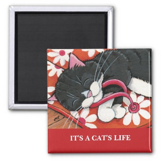 It's A Cat's Life   Personalizable Cat Art Magnet