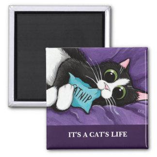 It's A Cat's Life | Personalizable Cat Art Magnet