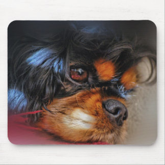 IT'S A HARD LIFE....... MOUSE PAD