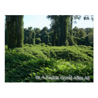 Its A Kudzu World After All Postcard
