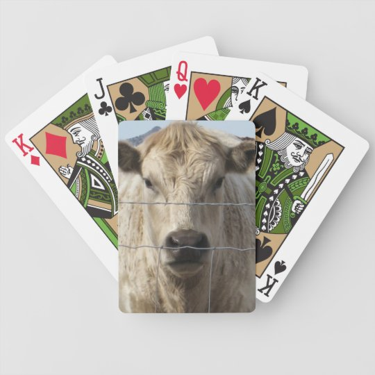 It's a Roundup Cattle Charolais Face Western Poker Deck