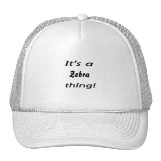 It's a zebra thing! trucker hats