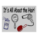 It's All About the Hair! Postcard