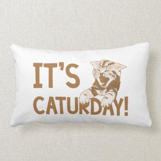 It's Caturday! 2 Lumbar Pillow
