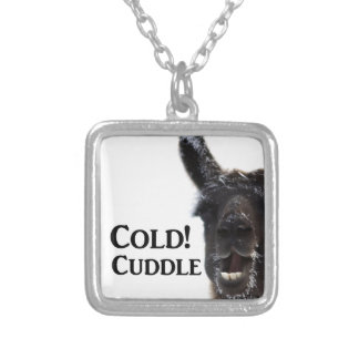 its cold lets cuddle silver plated necklace