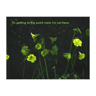 It's Getting to the Point Stretched Canvas Print