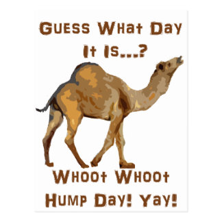 Its Hump Day Postcards