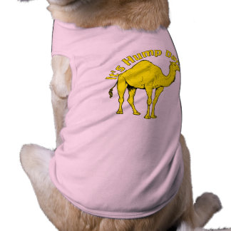 It's Hump Day Shirt