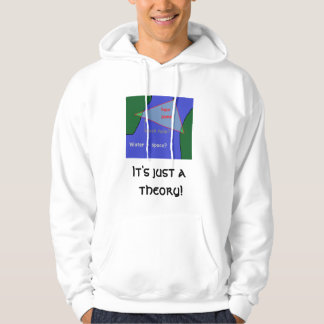 It's just a theory! hoodie
