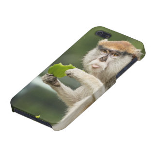 """It's Monday"" Monkey iPhone Case iPhone 5 Cases"