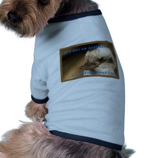 It's Not An Attitude! Pet Clothes