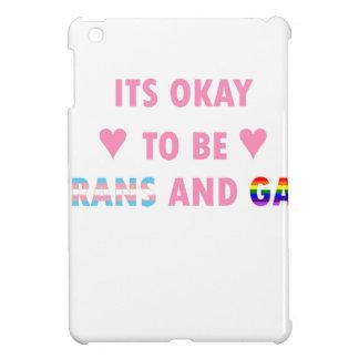 It's Okay To Be Trans And Gay (v1) iPad Mini Cover