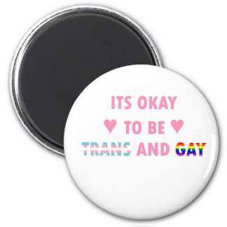 It's Okay To Be Trans And Gay (v1) Magnet