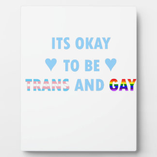 It's Okay To Be Trans And Gay (v2) Plaque