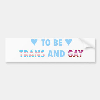 It's Okay To Be Trans And Gay (v3) Bumper Sticker