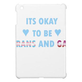 It's Okay To Be Trans And Gay (v3) iPad Mini Covers